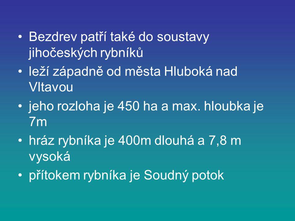 Bezdrev patří také do soustavy jihočeských rybníků leží západně od města Hluboká nad Vltavou jeho rozloha je 450 ha a max. hloubka je 7m hráz rybníka
