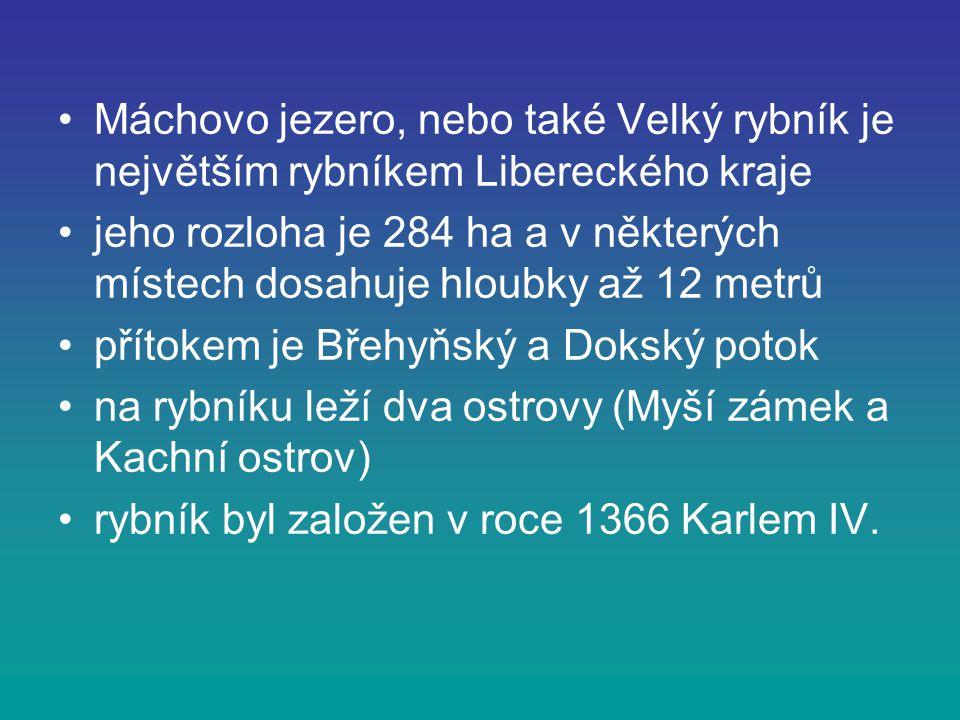 Máchovo jezero, nebo také Velký rybník je největším rybníkem Libereckého kraje jeho rozloha je 284 ha a v některých místech dosahuje hloubky až 12 met