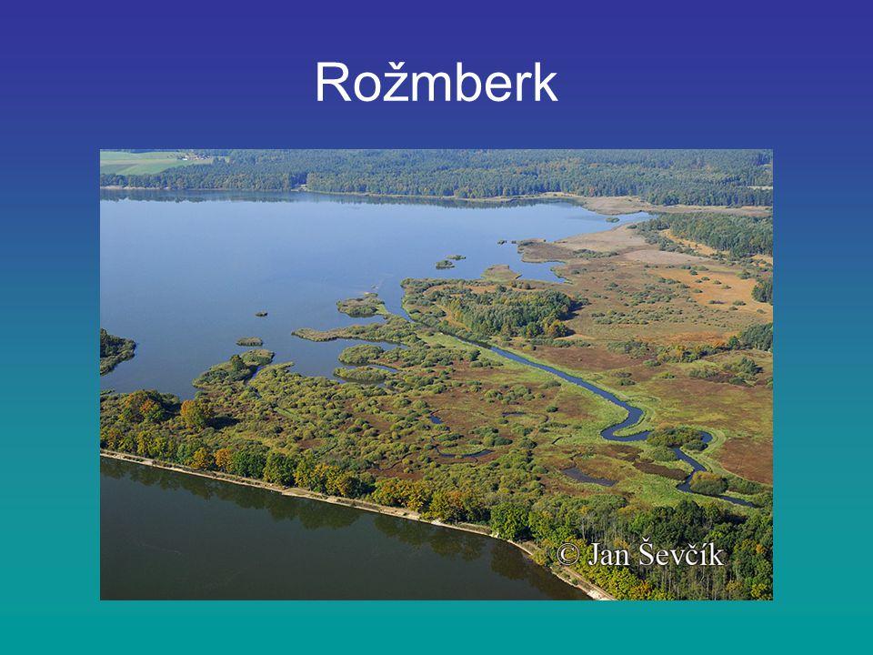 Rožmberk je největší rybník v České republice, nachází se v jižních Čechách nedaleko města Třeboň rybník má rozlohu 489 ha jeho hráz je dlouhá 2430 metrů hráz svou velikostí převyšuje rybníky po celé Evropě v některých místech dosahuje rybník hloubky až 6,2 metrů hlavním přítokem Rožmberka je řeka Lužnice