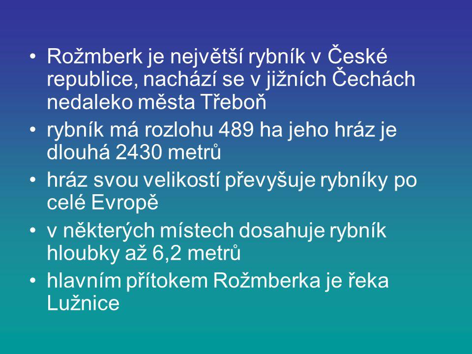 Rožmberk je největší rybník v České republice, nachází se v jižních Čechách nedaleko města Třeboň rybník má rozlohu 489 ha jeho hráz je dlouhá 2430 me