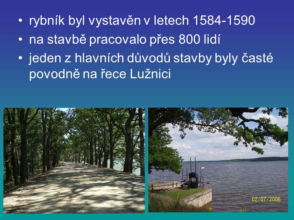 rybník byl vystavěn v letech 1584-1590 na stavbě pracovalo přes 800 lidí jeden z hlavních důvodů stavby byly časté povodně na řece Lužnici
