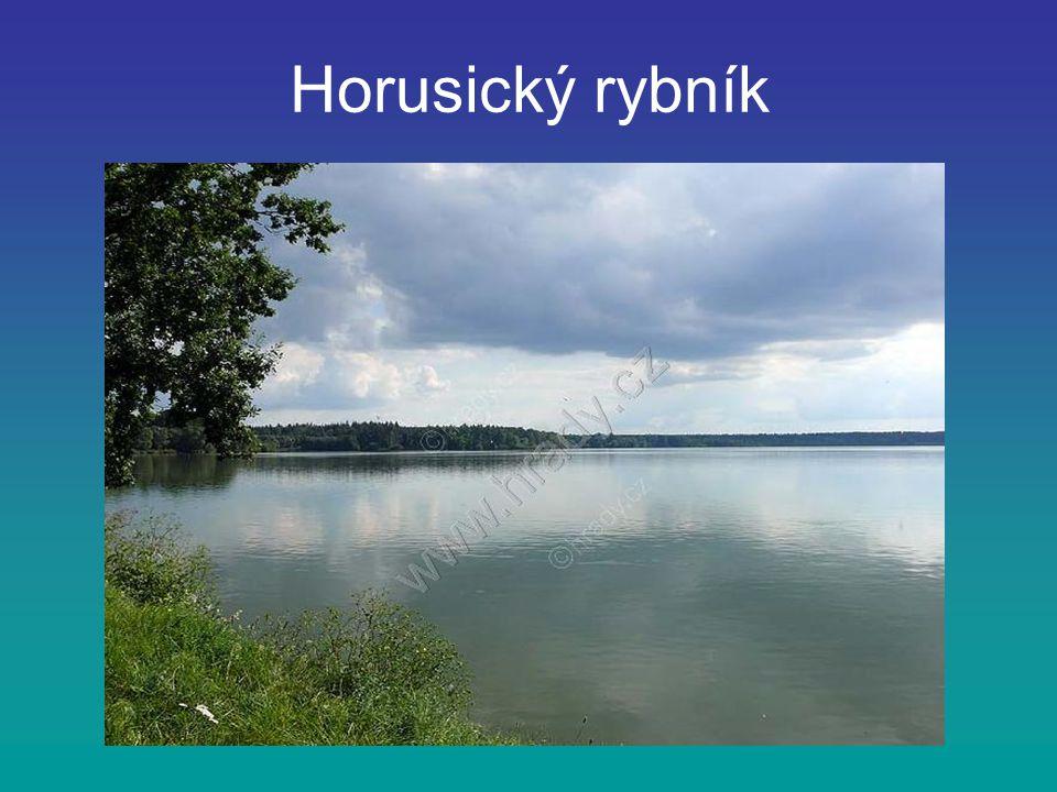 Horusický rybník je druhý největší v České republice leží v jižních Čechách nedaleko města Tábor rozloha rybníku je 416 ha a objem 3,97 mil.