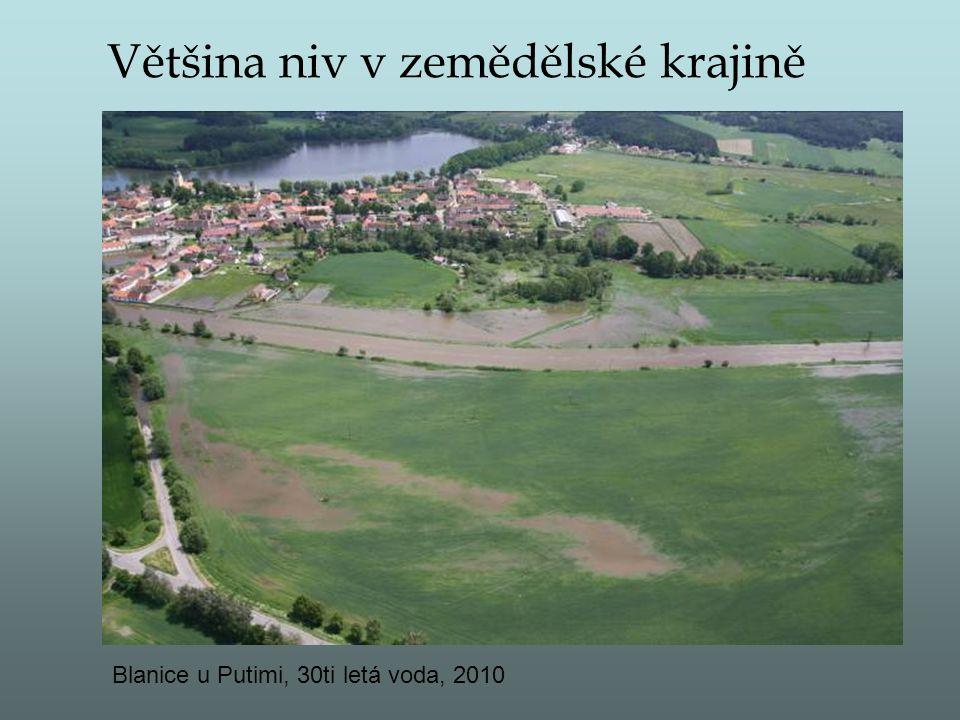 Většina niv v zemědělské krajině Blanice u Putimi, 30ti letá voda, 2010