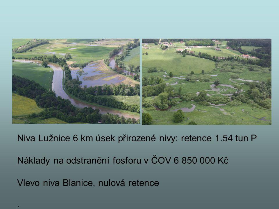 Niva Lužnice 6 km úsek přirozené nivy: retence 1.54 tun P Náklady na odstranění fosforu v ČOV 6 850 000 Kč Vlevo niva Blanice, nulová retence.