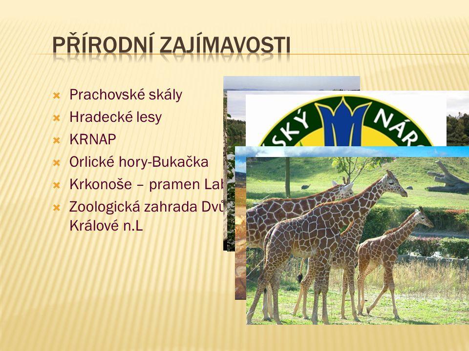  Prachovské skály  Hradecké lesy  KRNAP  Orlické hory-Bukačka  Krkonoše – pramen Labe  Zoologická zahrada Dvůr Králové n.L