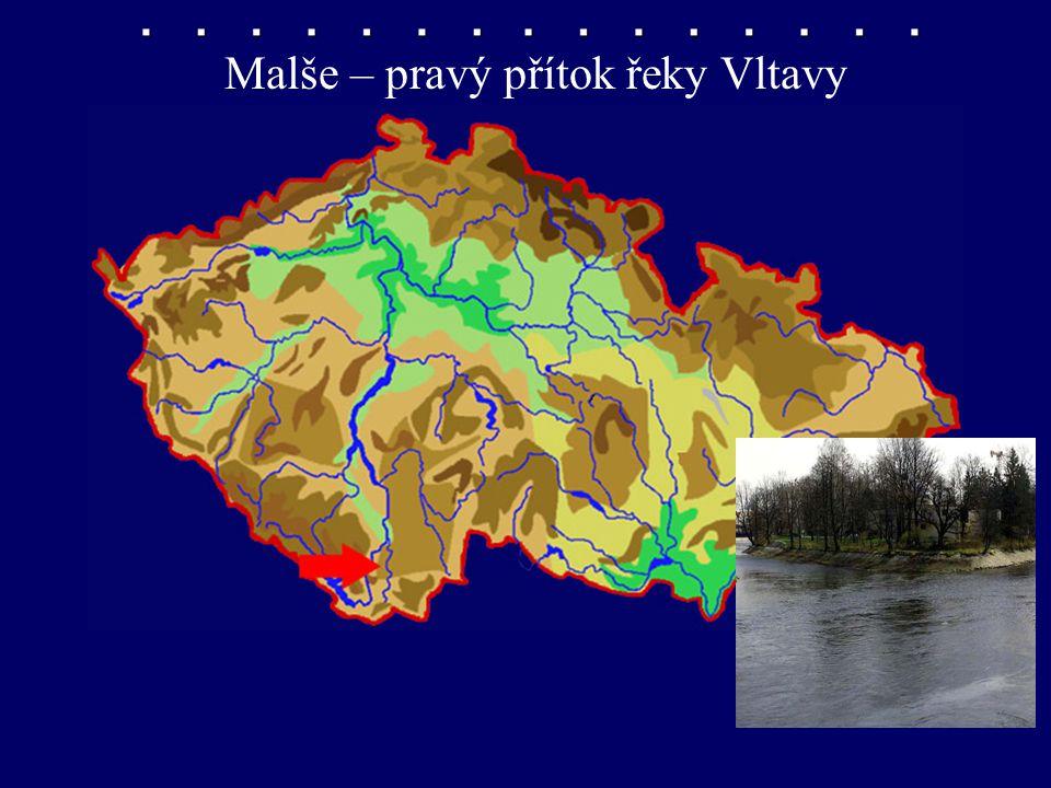 Malše – pravý přítok řeky Vltavy