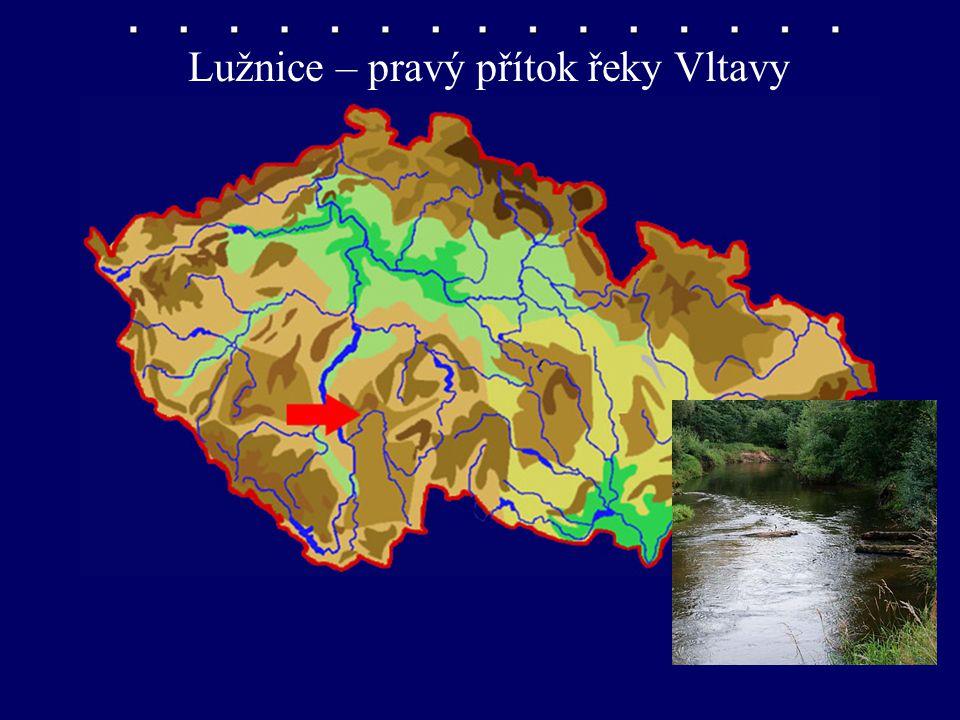 Lužnice – pravý přítok řeky Vltavy