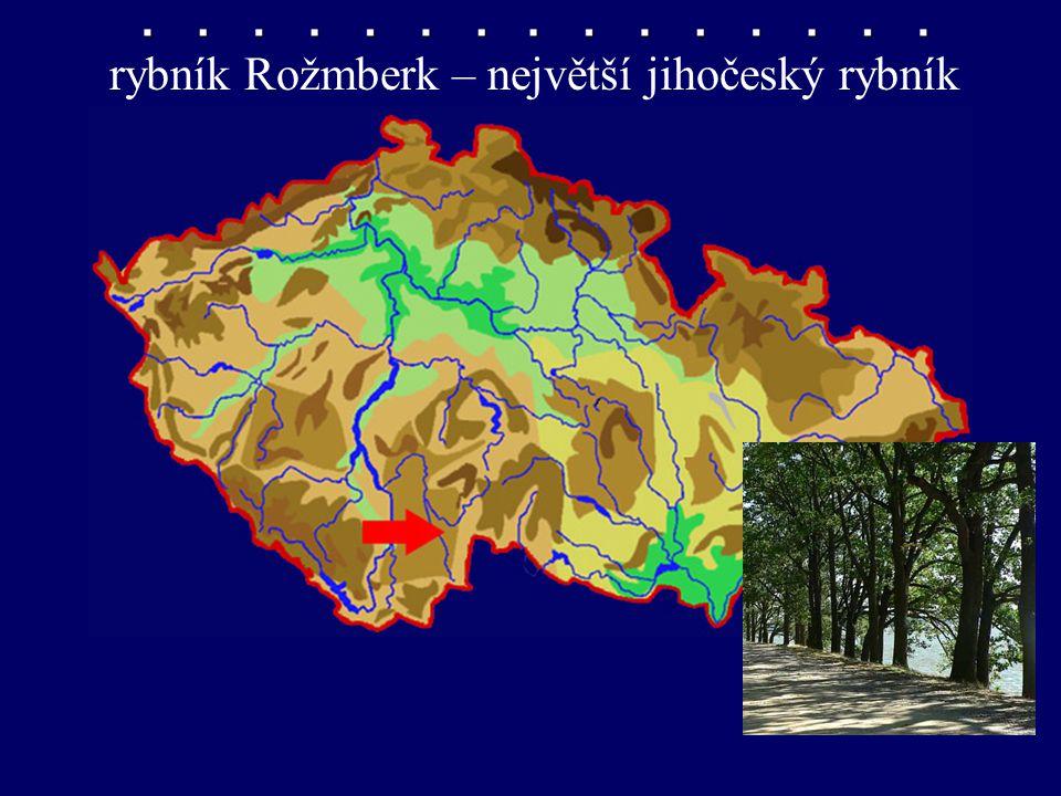 rybník Rožmberk rybník Rožmberk – největší jihočeský rybník
