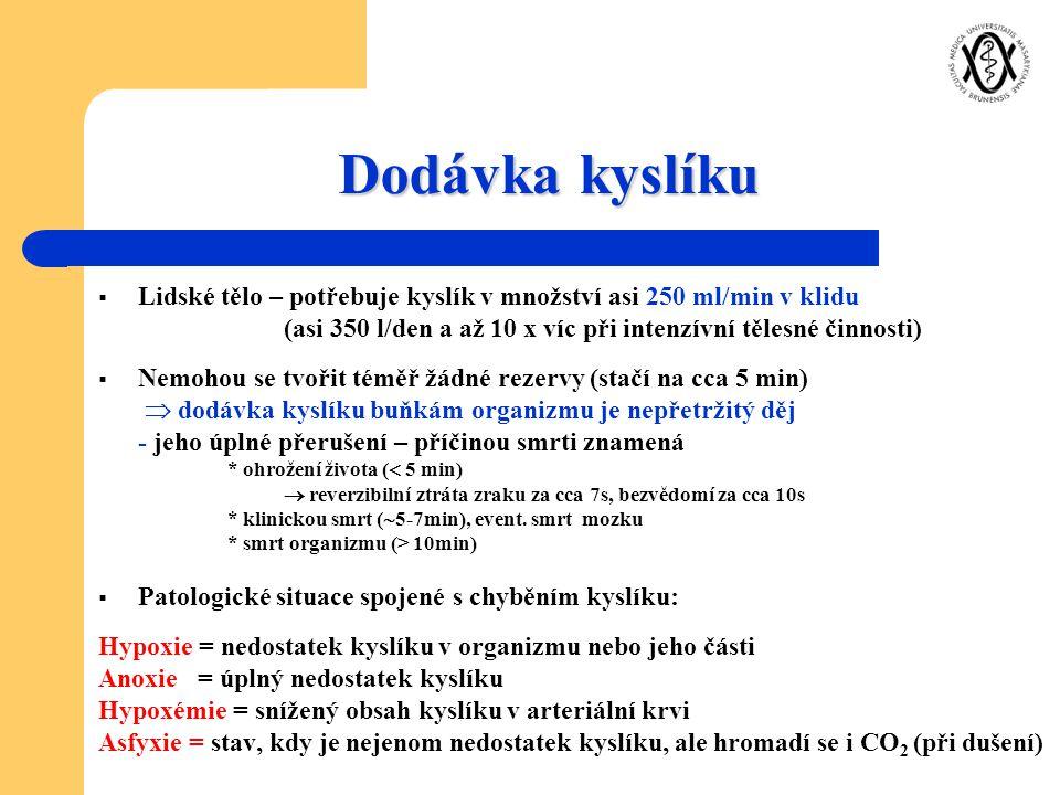Dodávka kyslíku  Lidské tělo – potřebuje kyslík v množství asi 250 ml/min v klidu (asi 350 l/den a až 10 x víc při intenzívní tělesné činnosti)  Nem