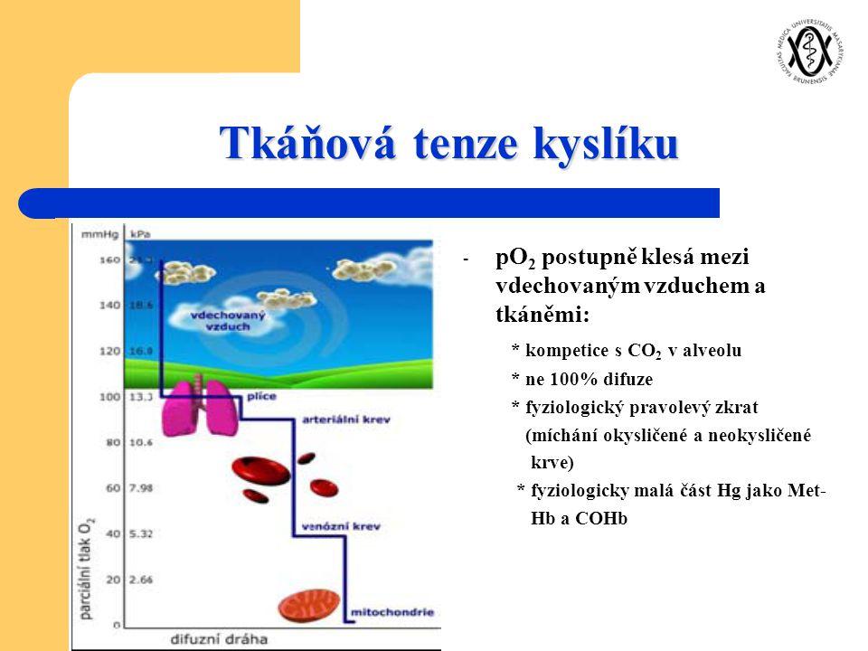 Tkáňová tenze kyslíku - pO 2 postupně klesá mezi vdechovaným vzduchem a tkáněmi: * kompetice s CO 2 v alveolu * ne 100% difuze * fyziologický pravolev