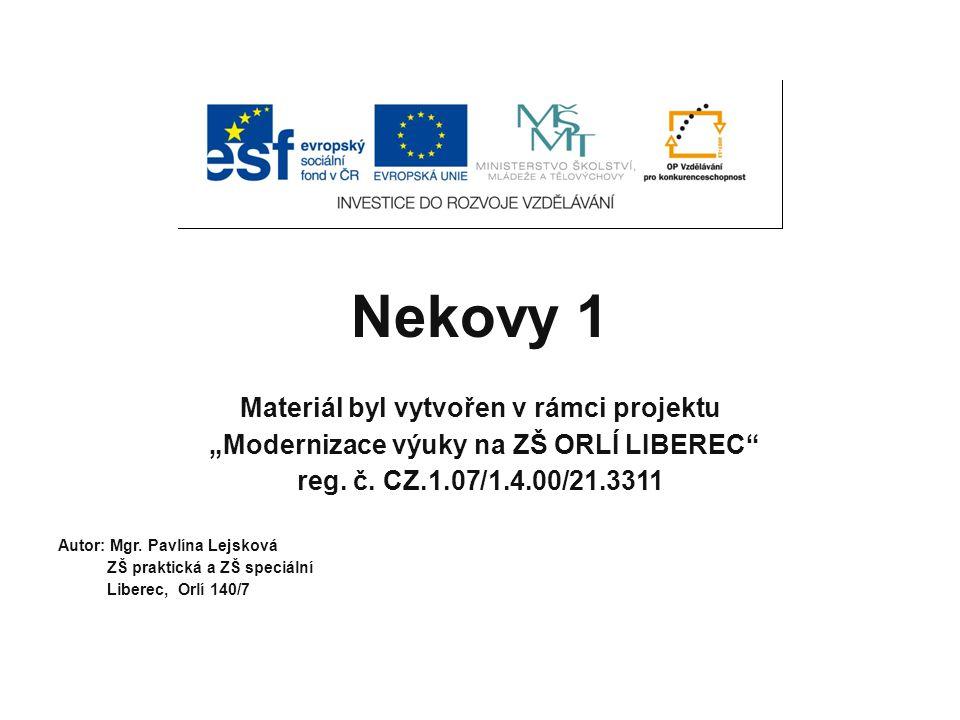 """Nekovy 1 Materiál byl vytvořen v rámci projektu """"Modernizace výuky na ZŠ ORLÍ LIBEREC reg."""