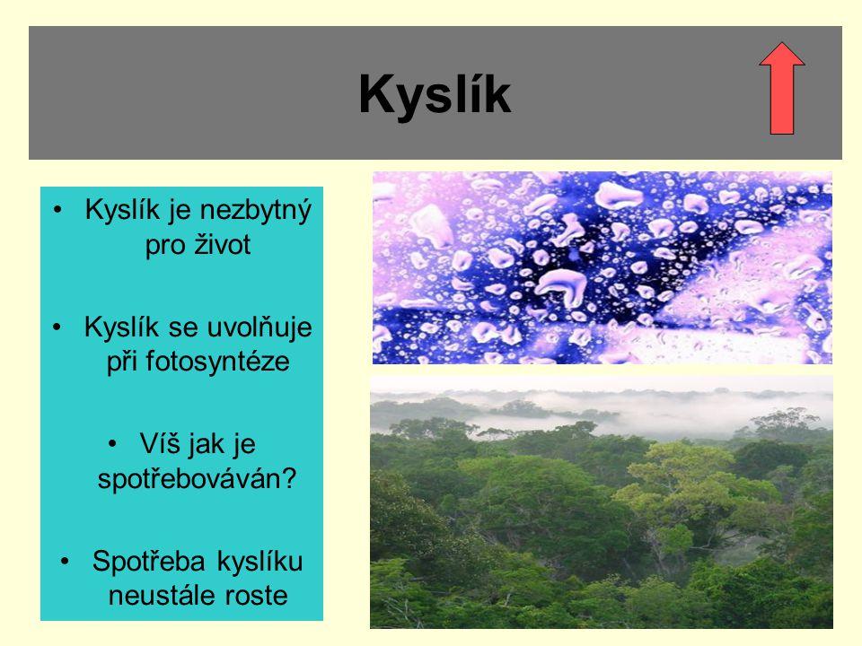 Kyslík Kyslík je nezbytný pro život Kyslík se uvolňuje při fotosyntéze Víš jak je spotřebováván? Spotřeba kyslíku neustále roste