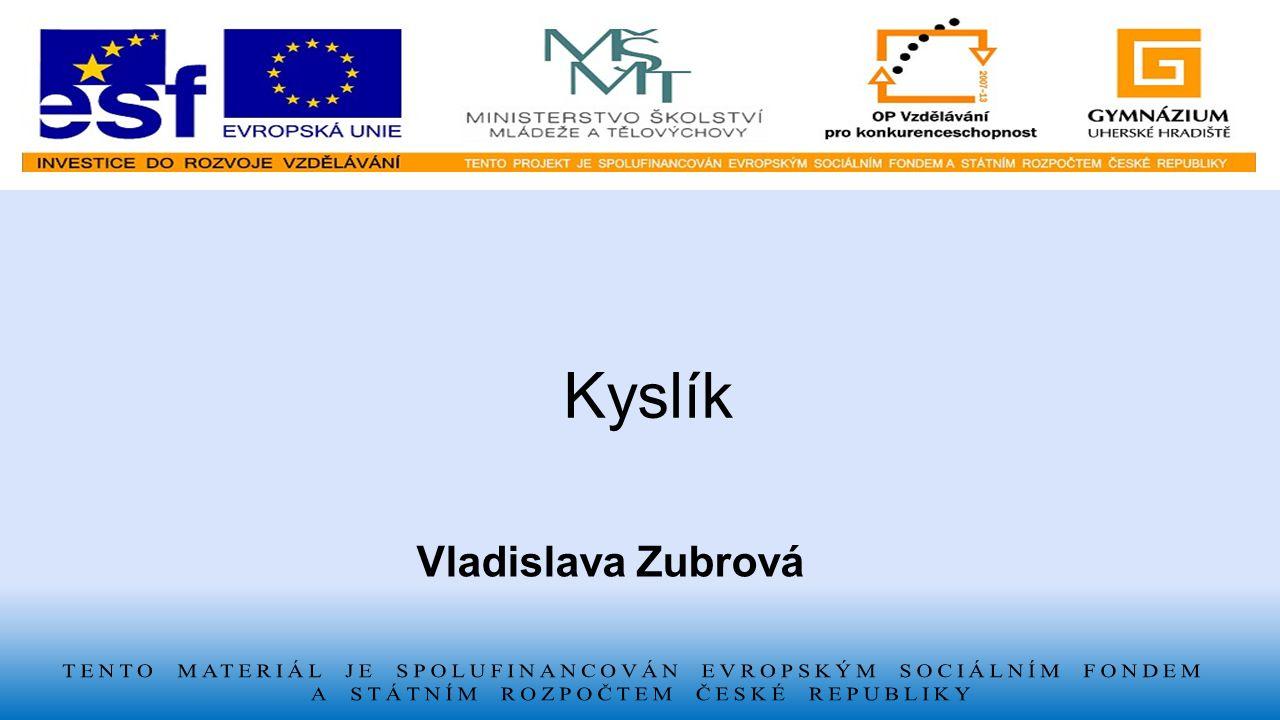 Vladislava Zubrová Kyslík