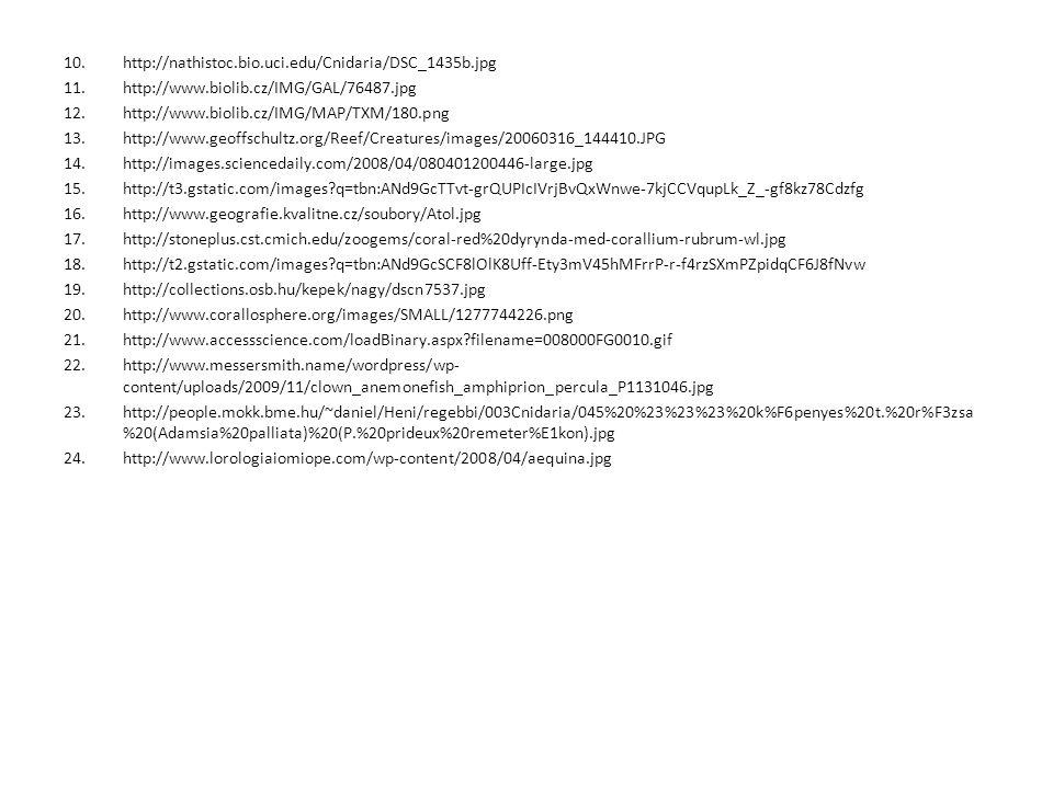 10.http://nathistoc.bio.uci.edu/Cnidaria/DSC_1435b.jpg 11.http://www.biolib.cz/IMG/GAL/76487.jpg 12.http://www.biolib.cz/IMG/MAP/TXM/180.png 13.http:/