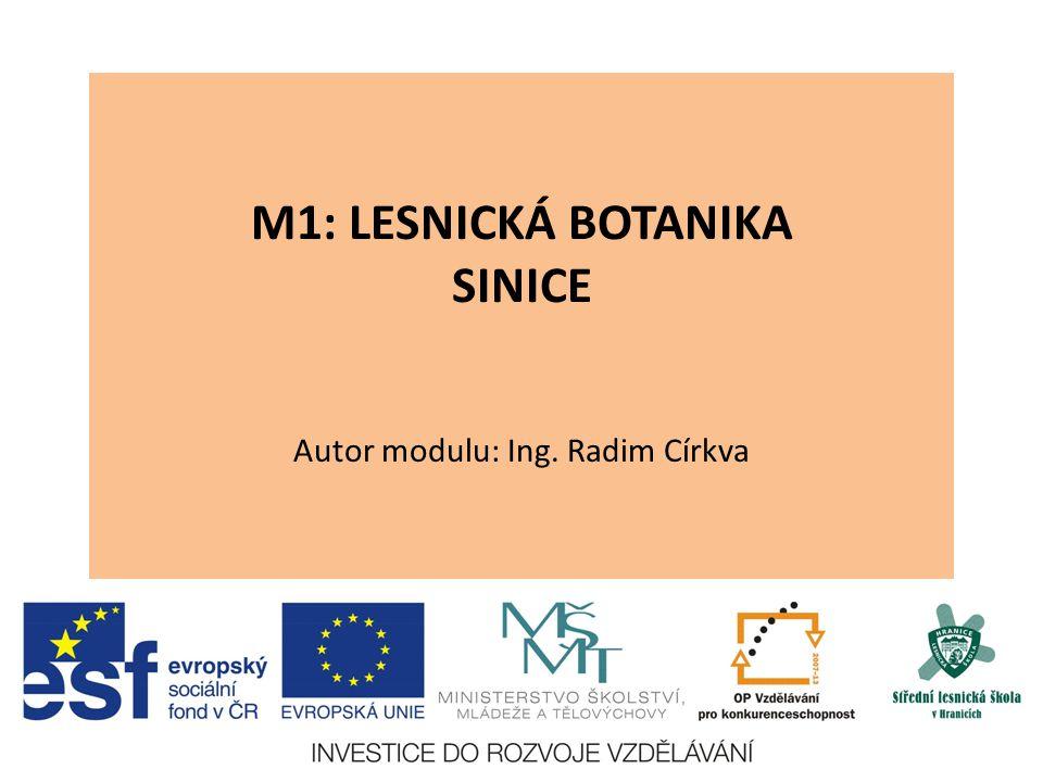 M1: LESNICKÁ BOTANIKA SINICE Autor modulu: Ing. Radim Církva