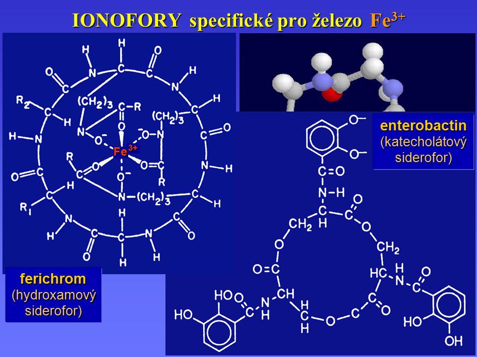 IONOFORY specifické pro železo Fe 3+ enterobactin (katecholátový siderofor) 3+ Fe ferichrom (hydroxamový siderofor)