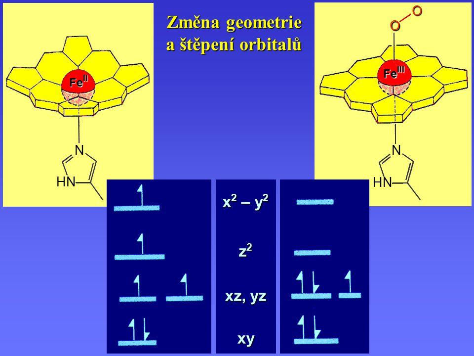 Změna geometrie a štěpení orbitalů Fe II N HN Fe III N HN O O x 2 – y 2 z 2 xz, yz xy