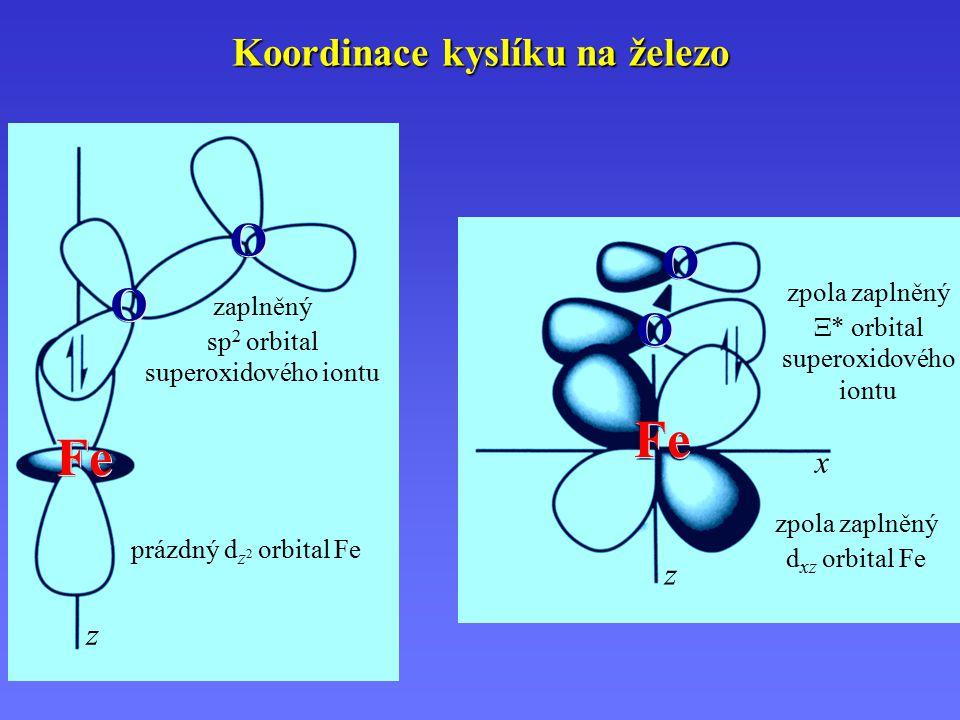 Koordinace kyslíku na železo Fe O O O O z O O O O z x zaplněný sp 2 orbital superoxidového iontu prázdný d z 2 orbital Fe zpola zaplněný d xz orbital Fe zpola zaplněný  * orbital superoxidového iontu