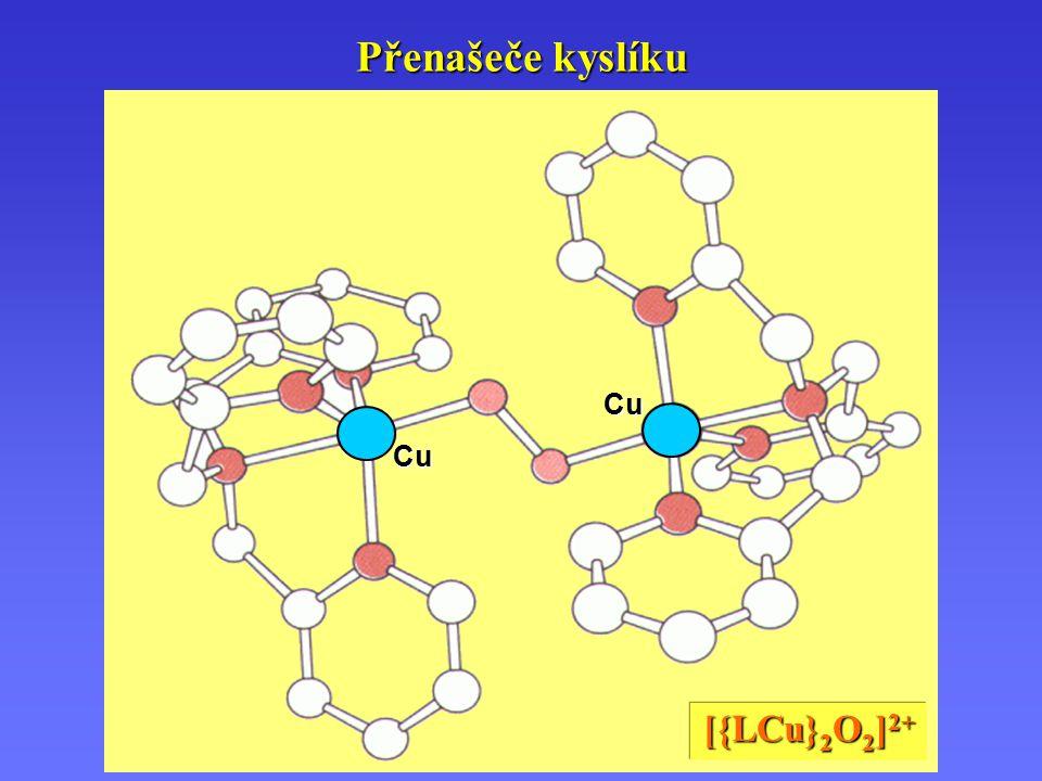 Cu Cu Přenašeče kyslíku [{LCu} 2 O 2 ] 2+