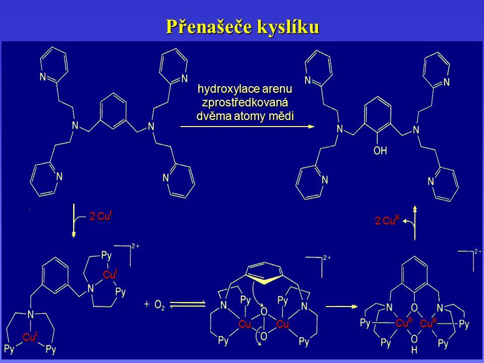 Přenašeče kyslíku hydroxylace arenu zprostředkovaná dvěma atomy mědi Cu I 2 Cu I 2 Cu II Cu II Cu Cu