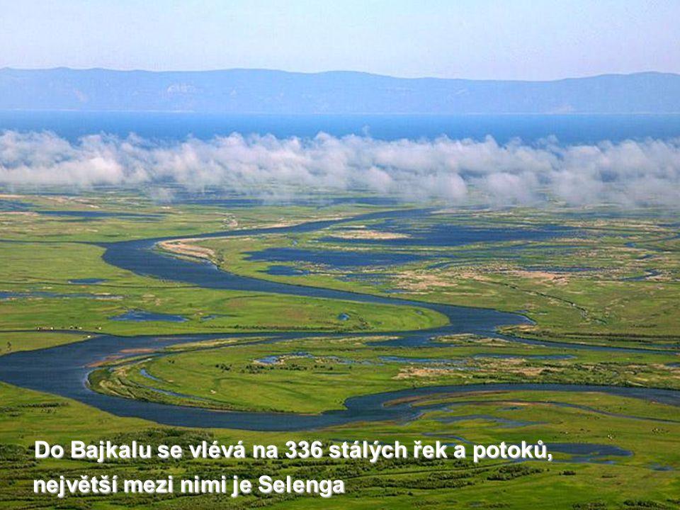 Do Bajkalu se vlévá na 336 stálých řek a potoků, největší mezi nimi je Selenga