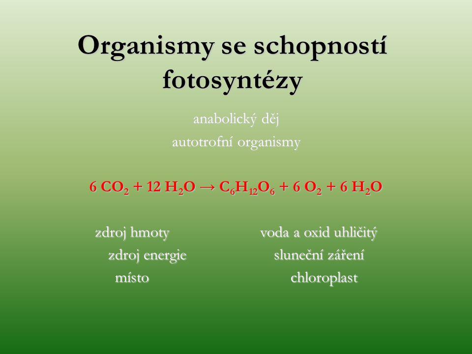 anabolický děj autotrofní organismy 6 CO 2 + 12 H 2 O → C 6 H 12 O 6 + 6 O 2 + 6 H 2 O zdroj hmoty voda a oxid uhličitý zdroj energie sluneční záření místo chloroplast