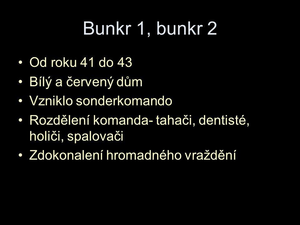 Bunkr 1, bunkr 2 Od roku 41 do 43 Bílý a červený dům Vzniklo sonderkomando Rozdělení komanda- tahači, dentisté, holiči, spalovači Zdokonalení hromadného vraždění