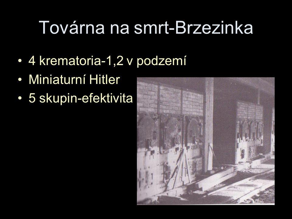 Továrna na smrt-Brzezinka 4 krematoria-1,2 v podzemí Miniaturní Hitler 5 skupin-efektivita