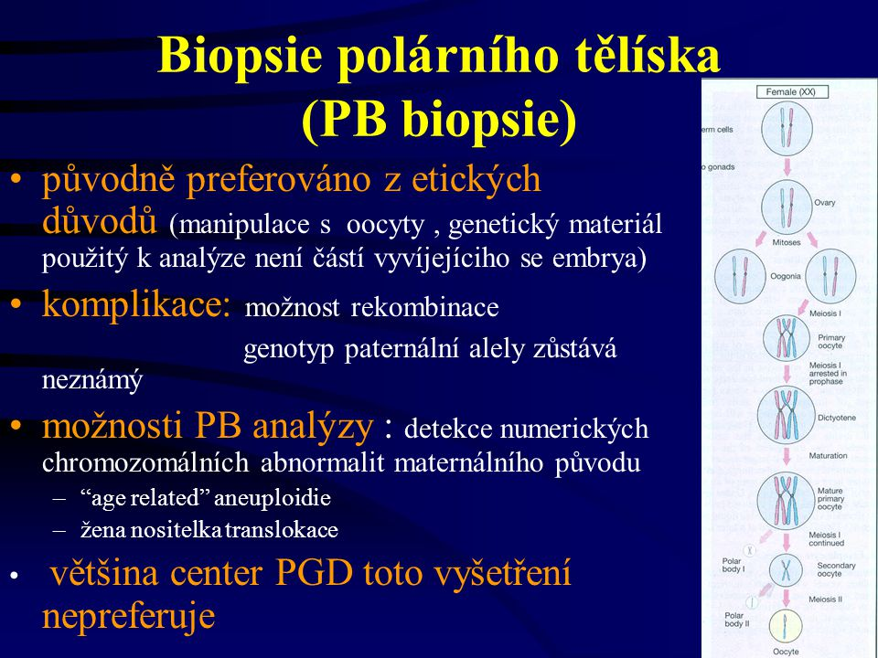 Biopsie blastocyst blastocysta: –opouzdřená struktura obsahující přibližně 100 buněk –vyvíjí se 5-6 den po inseminaci –trofoektodermální buňky - odvozeny z placenty a jiných extra-embryonálních tkání –odběr 10 buněk nepostihuje časný vývoj embryí, ale neví se jaký efekt ná na pozdější vývoj fetu –pouze asi 40-50% preimplantovaných embryí se vyvine do tohoto stádia in vitro výhoda: – menší technická náročnost biopsie – možnost více buněk k analýze