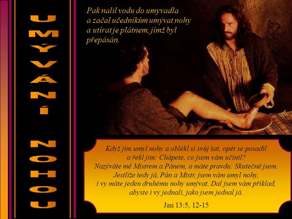 Povězte dceři siónské: Hle, král tvůj přichází k tobě, tichý a sedící na oslici, na oslátku té, která je podrobena jhu.