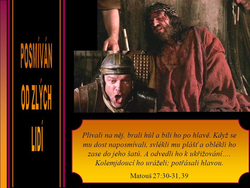 Byl trápen a pokořil se, ústa neotevřel; jako beránek vedený na porážku, jako ovce před střihači zůstal němý, ústa neotevřel.