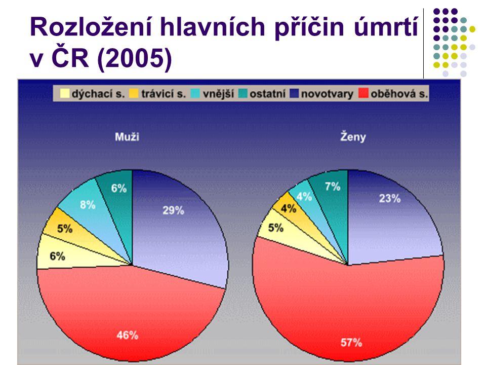 Rozložení hlavních příčin úmrtí v ČR (2005)