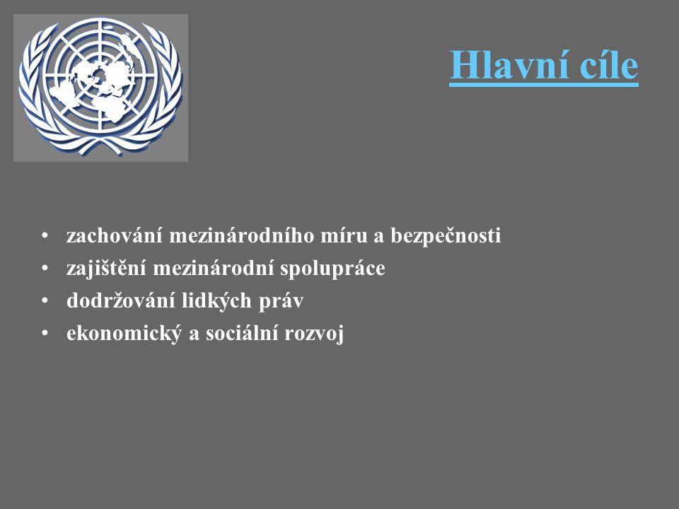 Hlavní cíle zachování mezinárodního míru a bezpečnosti zajištění mezinárodní spolupráce dodržování lidkých práv ekonomický a sociální rozvoj