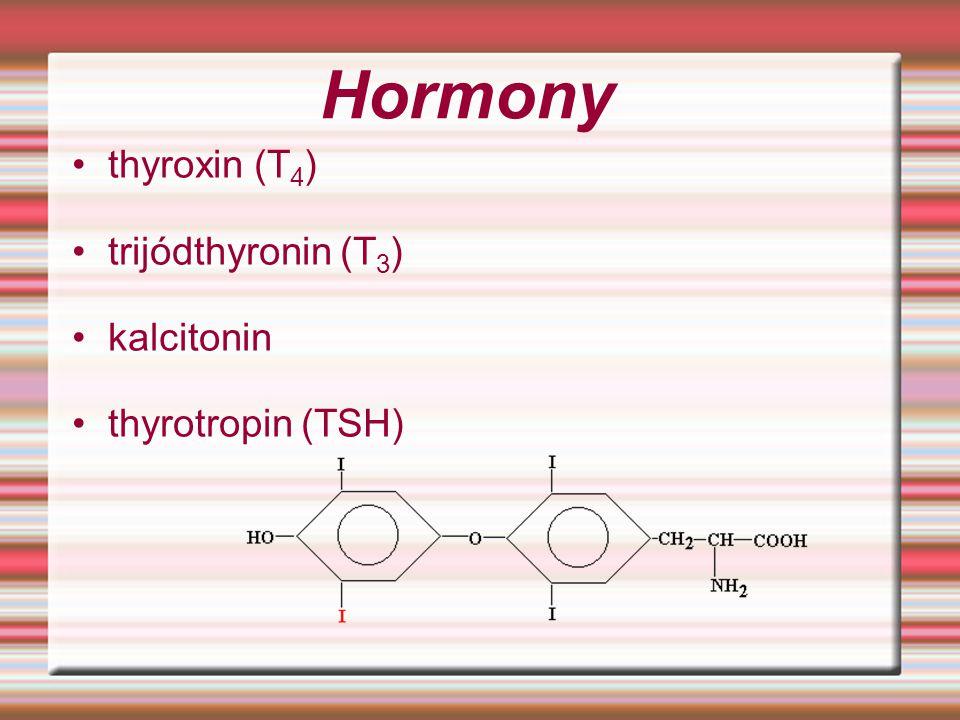 Hormony thyroxin (T 4 ) trijódthyronin (T 3 ) kalcitonin thyrotropin (TSH)