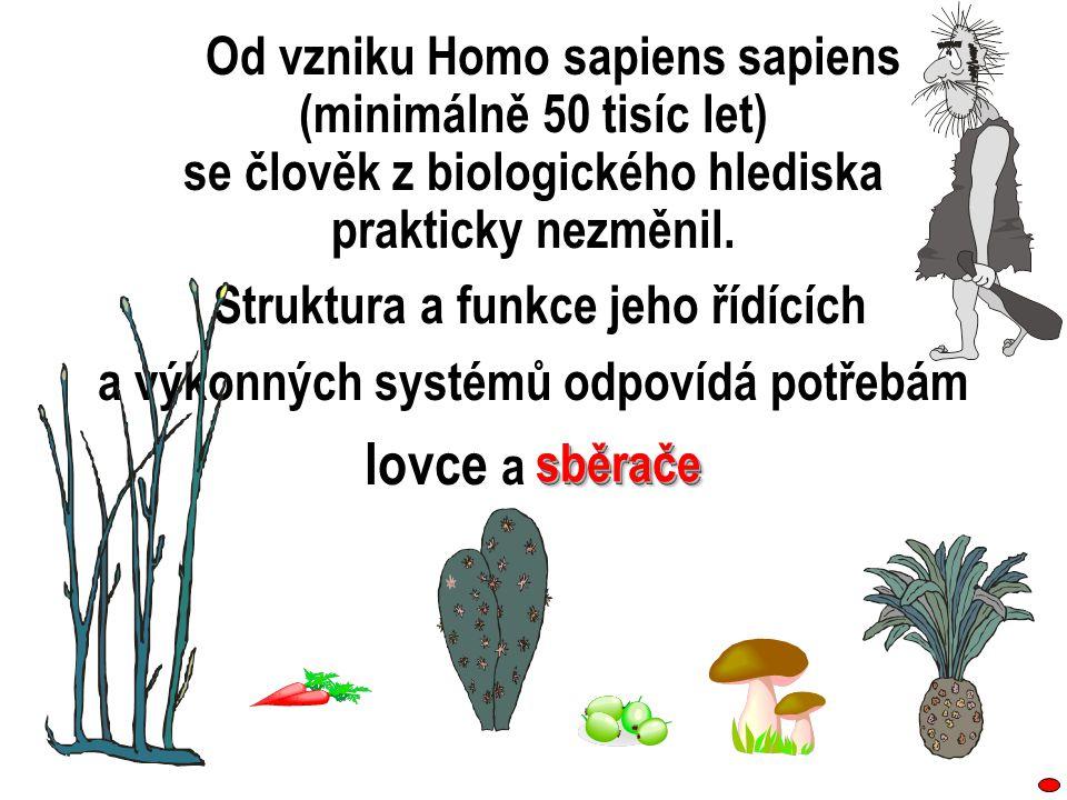 Od vzniku Homo sapiens sapiens (minimálně 50 tisíc let) se člověk z biologického hlediska prakticky nezměnil. Struktura a funkce jeho řídících a výkon