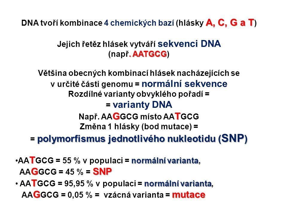A, C, G a T DNA tvoří kombinace 4 chemických bazí (hlásky A, C, G a T ) Jejich řetěz hlásek vytváří sekvenci DNA. AATGCG (např. AATGCG) Většina obecný