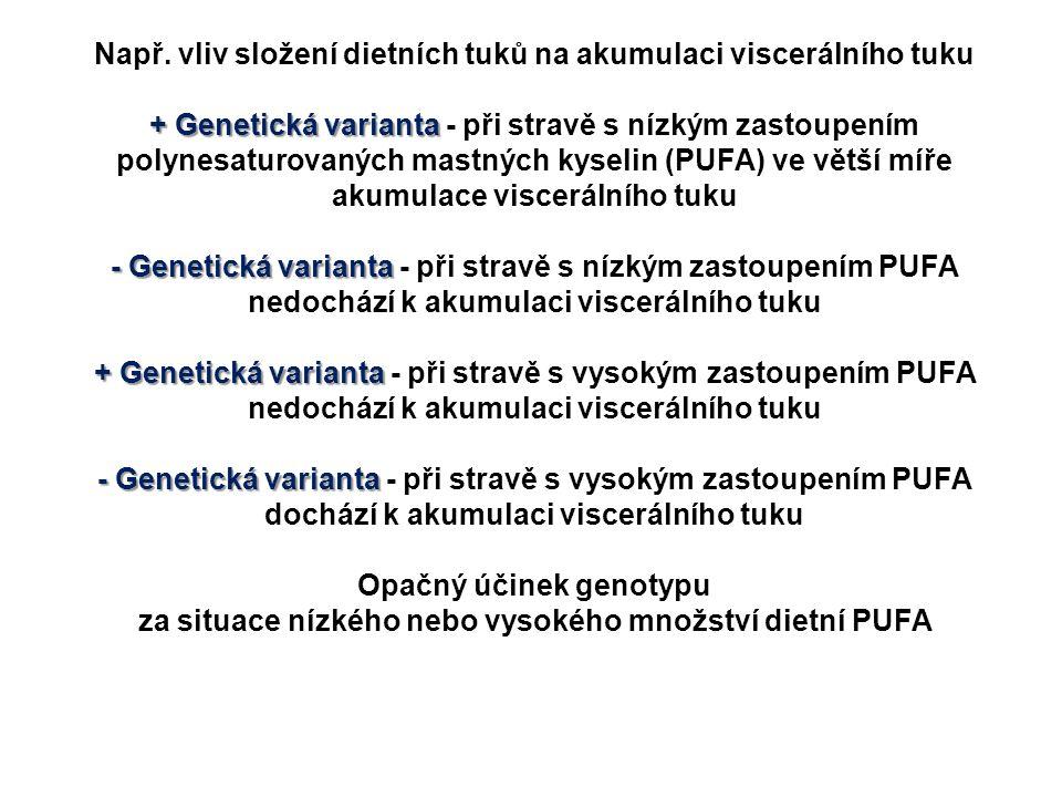 Např. vliv složení dietních tuků na akumulaci viscerálního tuku + Genetická varianta + Genetická varianta - při stravě s nízkým zastoupením polynesatu