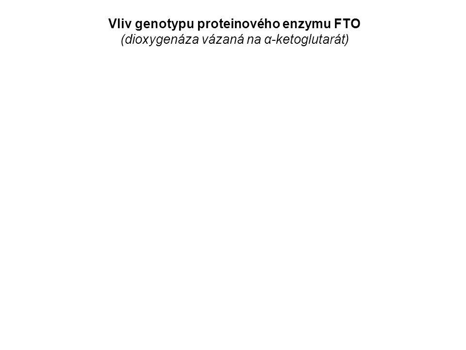 Vliv genotypu proteinového enzymu FTO (dioxygenáza vázaná na α-ketoglutarát)