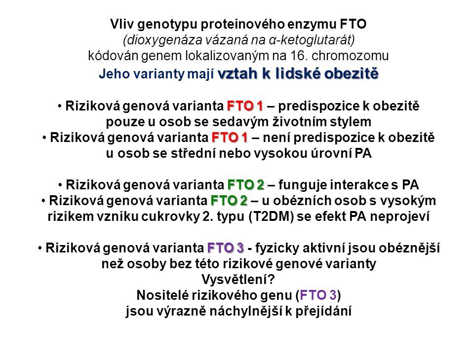 Vliv genotypu proteinového enzymu FTO (dioxygenáza vázaná na α-ketoglutarát) kódován genem lokalizovaným na 16. chromozomu vztah k lidské obezitě Jeho