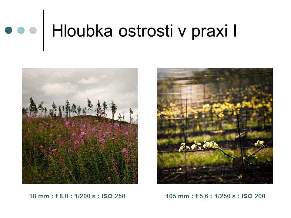 Hloubka ostrosti v praxi I 18 mm : f 8,0 : 1/200 s : ISO 250 105 mm : f 5,6 : 1/250 s : ISO 200