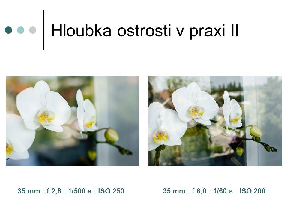 Hloubka ostrosti v praxi II 35 mm : f 2,8 : 1/500 s : ISO 250 35 mm : f 8,0 : 1/60 s : ISO 200