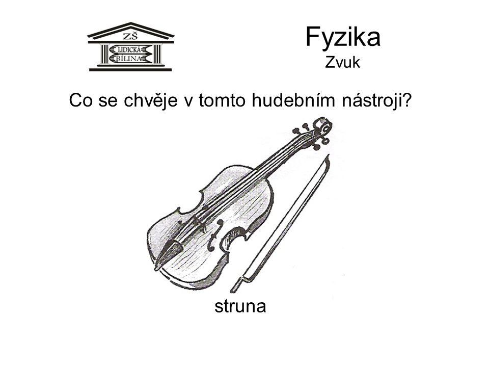 Fyzika Zvuk struna Co se chvěje v tomto hudebním nástroji?