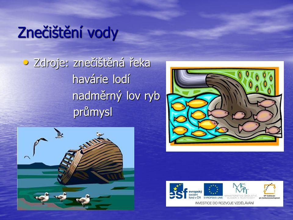 Znečištění vody Zdroje: znečištěná řeka Zdroje: znečištěná řeka havárie lodí havárie lodí nadměrný lov ryb nadměrný lov ryb průmysl průmysl
