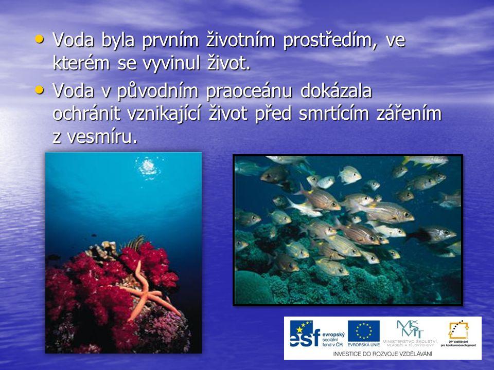Voda je životním prostředím mnoha živočichů.