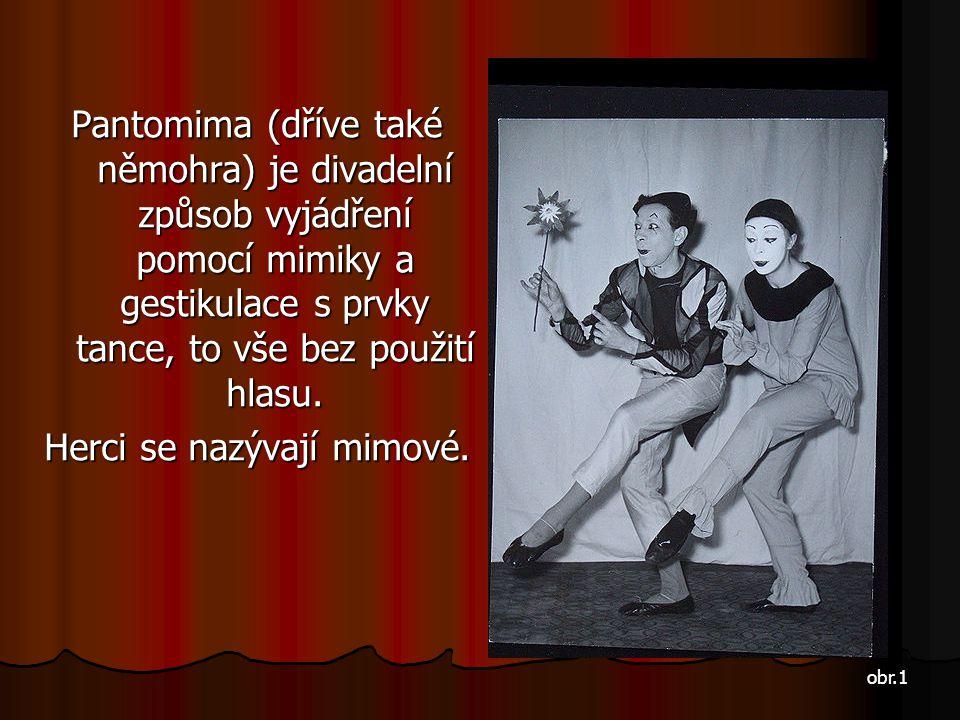 Pantomima (dříve také němohra) je divadelní způsob vyjádření pomocí mimiky a gestikulace s prvky tance, to vše bez použití hlasu. Herci se nazývají mi