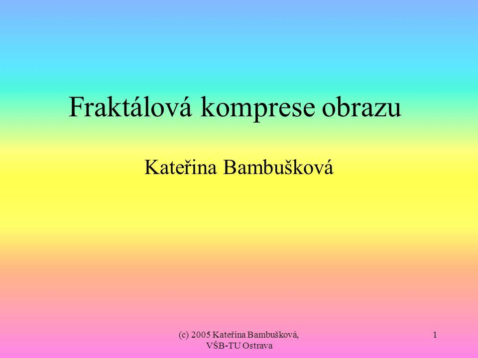 (c) 2005 Kateřina Bambušková, VŠB-TU Ostrava 12 Popis IFS Pro každý bod při aplikaci afinní transformace platí tato rovnice: Takto vypadá IFS ve zjednodušené formě (pro černobílé obrázky).