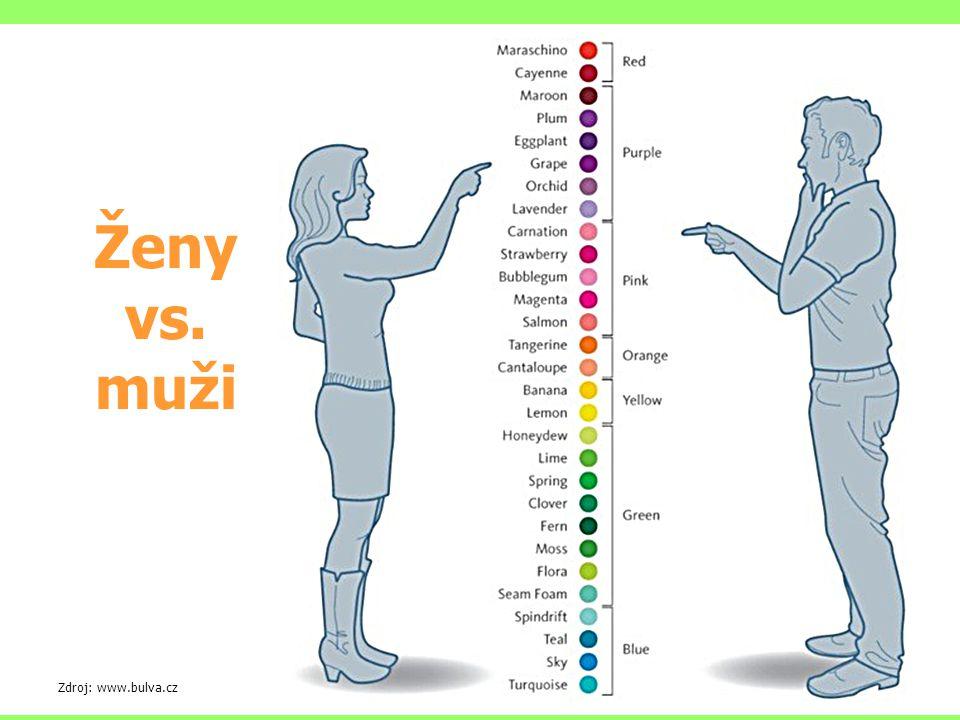 Ženy vs. muži Zdroj: www.bulva.cz