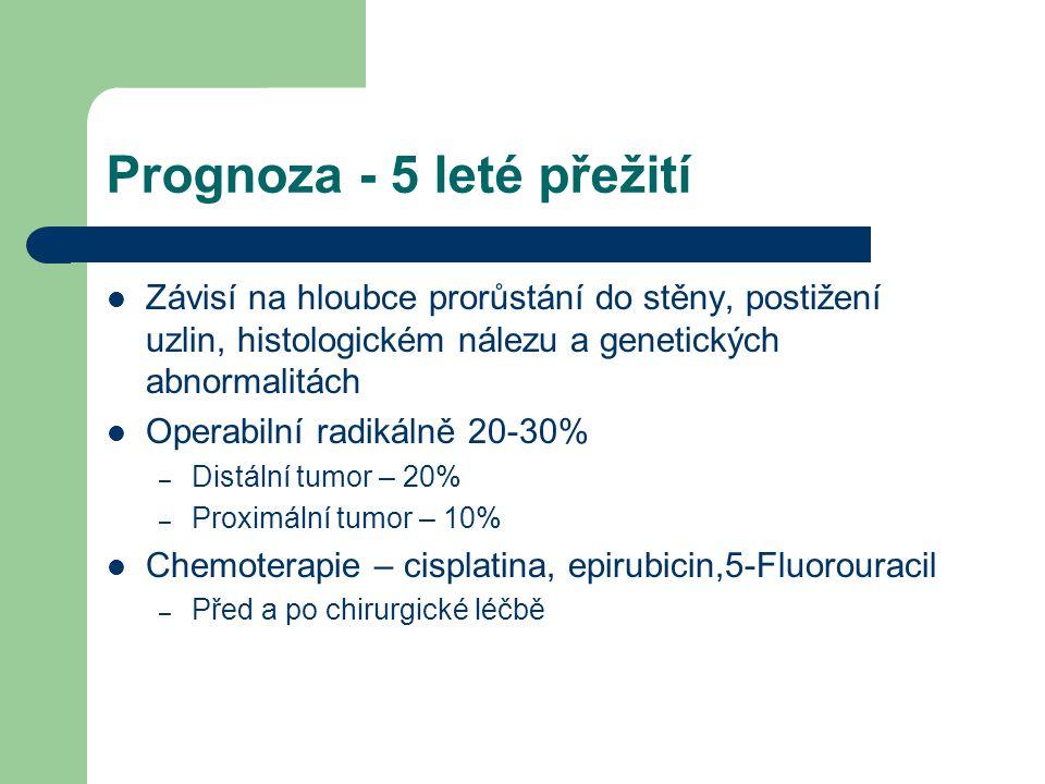 Prognoza - 5 leté přežití Závisí na hloubce prorůstání do stěny, postižení uzlin, histologickém nálezu a genetických abnormalitách Operabilní radikáln