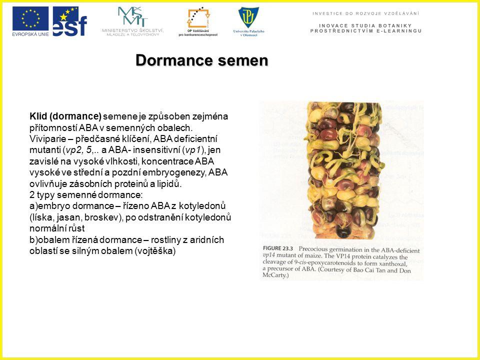 Dormance semen Klid (dormance) semene je způsoben zejména přítomností ABA v semenných obalech. Viviparie – předčasné klíčení, ABA deficientní mutanti