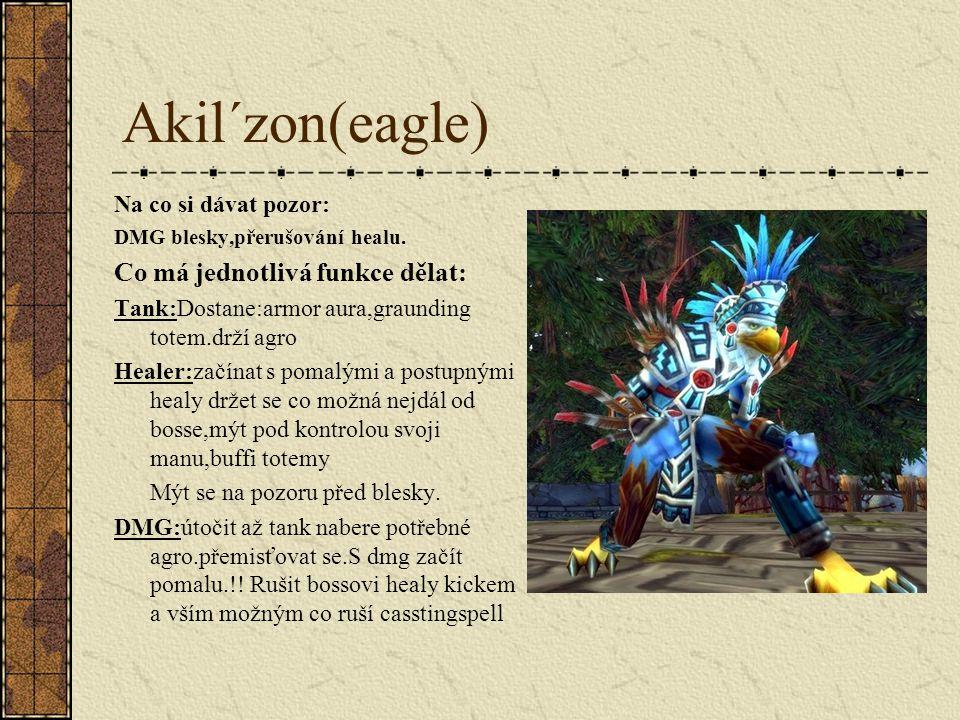 Akil´zon(eagle) Na co si dávat pozor: DMG blesky,přerušování healu.